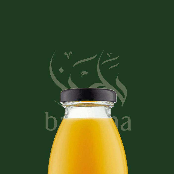 Protected: Baladna Logo Design
